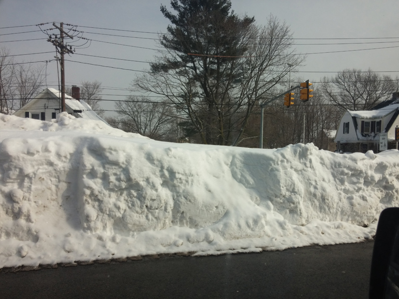 This is on Washington St in Dedham, at a major intersection. You can't even see over this bank, which is easily 8-10' high.