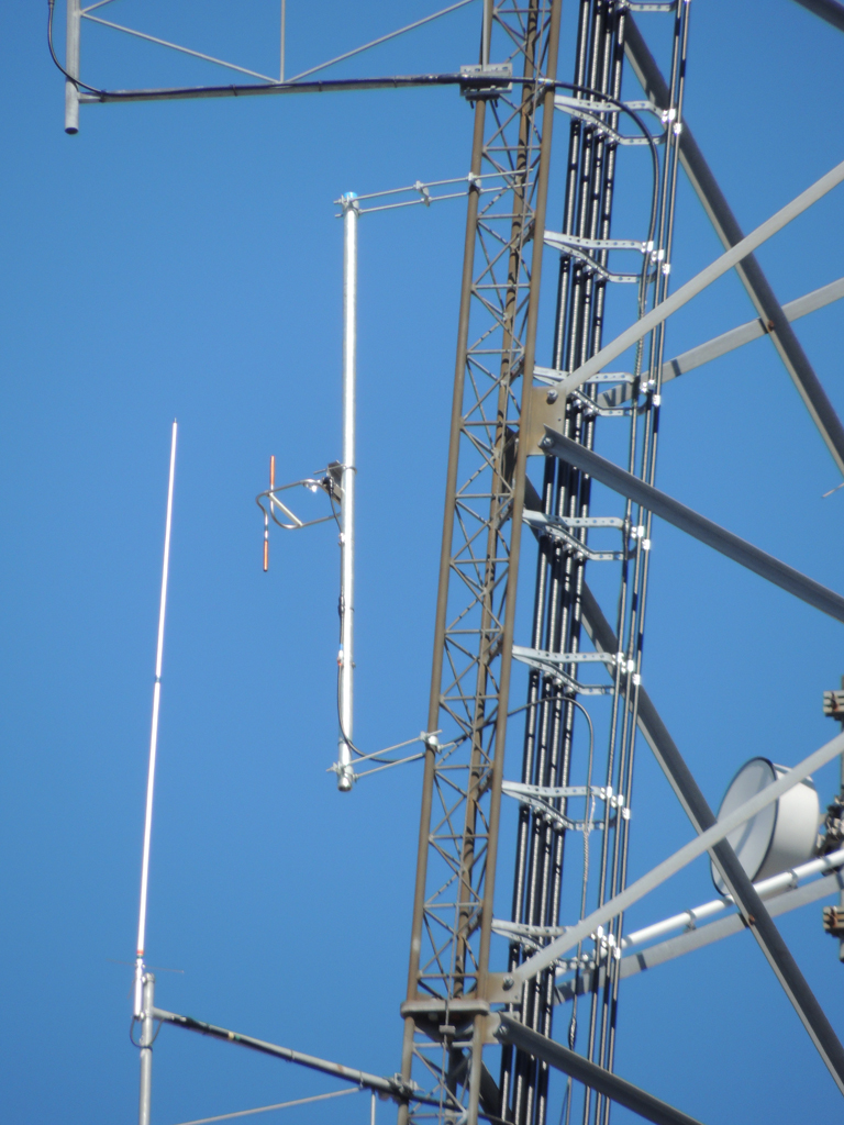 A closer shot of the Shively 6812 single bay antenna.