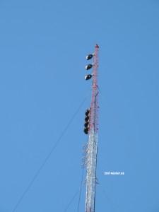 WXRV's new aux antennas.