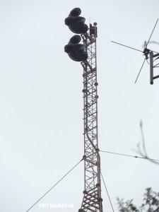 WIOV's antenna.