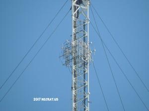 WBUR-FM's new Shively 6016 panel antenna.